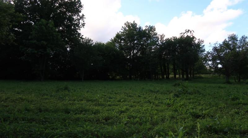 Vente terrain Saint maurice les brousse 32500€ - Photo 2