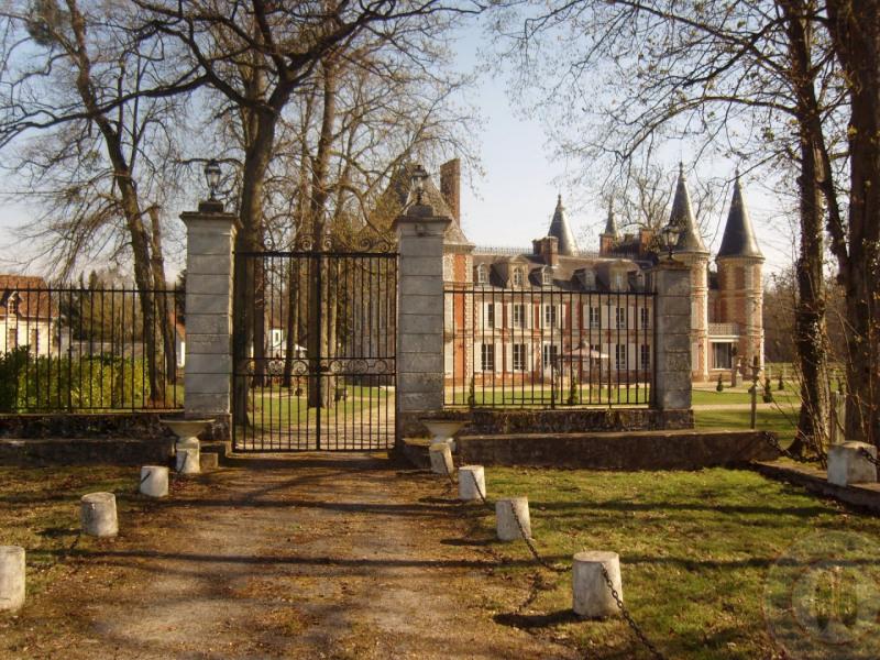 Vente de prestige château Fontenay-trésigny 2950000€ - Photo 7