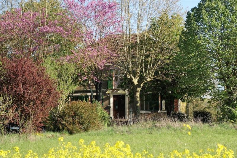 Vente maison / villa Graulhet 480000€ - Photo 5