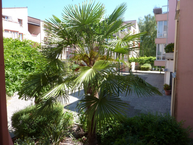 Location appartement Les ulis 820€ CC - Photo 1