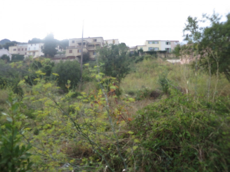 Vente terrain Calenzana 100 000€ - Photo 5