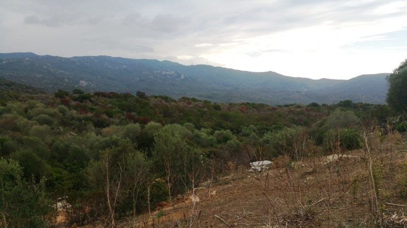 Sale site Pietrosella 170 000€ - Picture 3