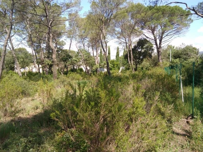 Vente terrain Le cannet des maures 169 000€ - Photo 3