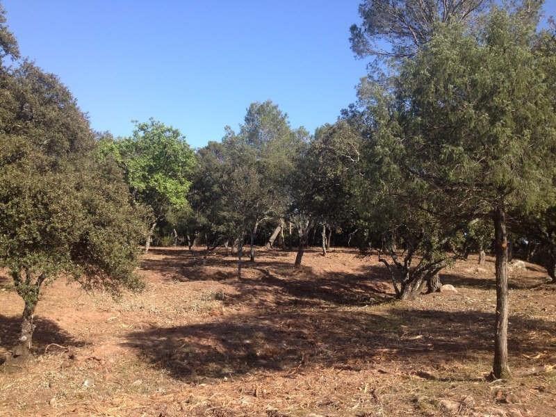 Sale site Le cannet des maures 140 000€ - Picture 5