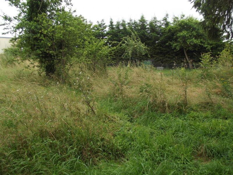 Vendita terreno Léthuin 49000€ - Fotografia 3