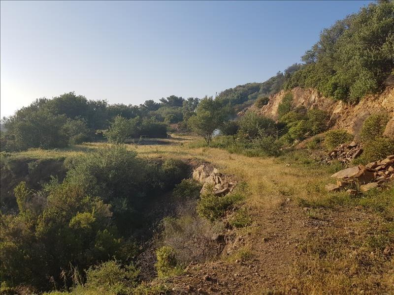 Vente terrain Corbara 720000€ - Photo 7