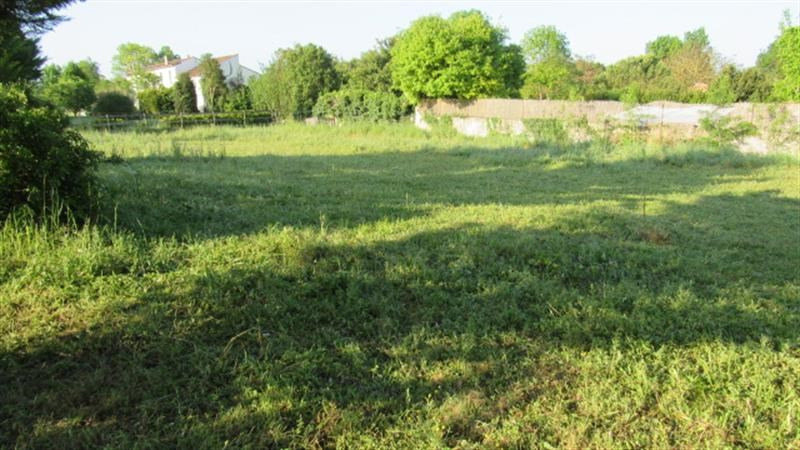 Sale site Bignay 16 800€ - Picture 2