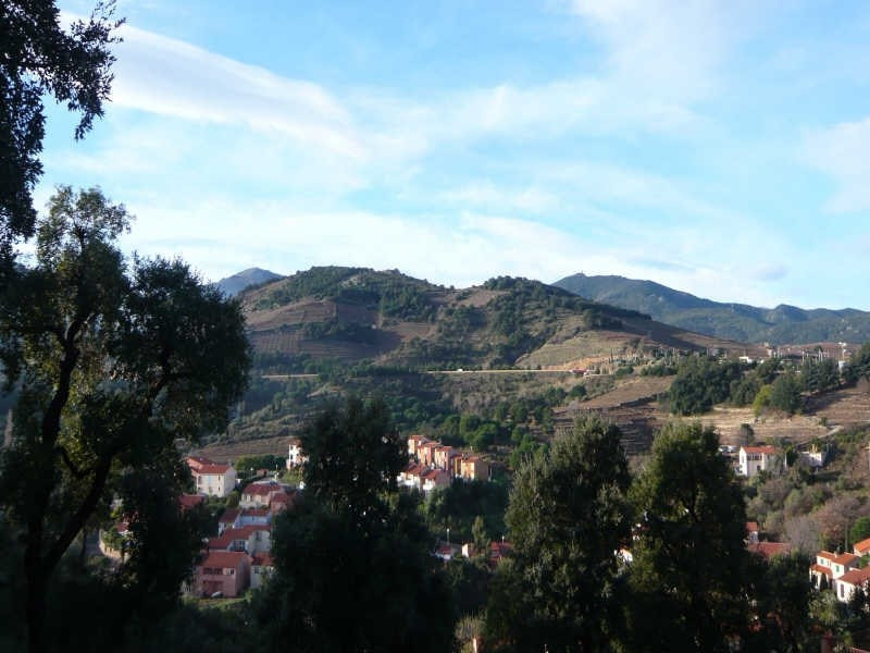 Vente terrain Collioure 199 000€ - Photo 1