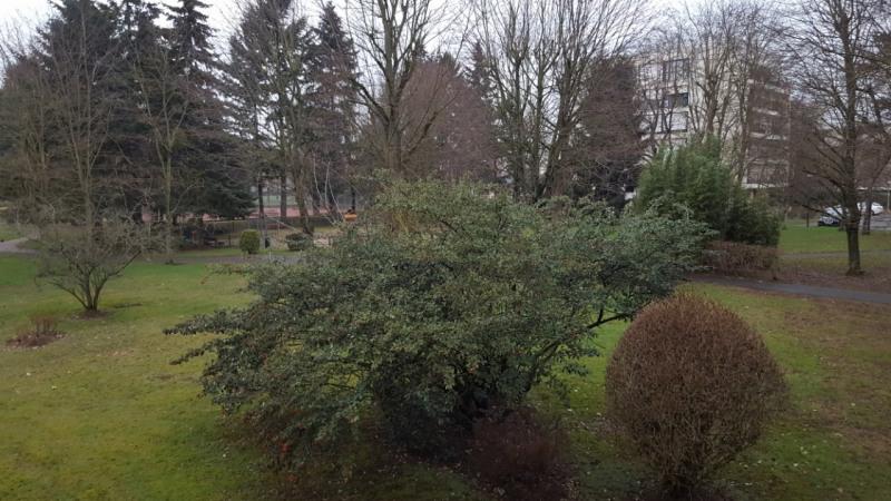 Vente appartement Villiers-sur-marne 275000€ - Photo 2