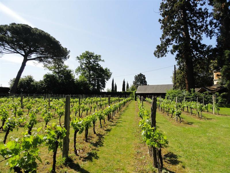 Vente de prestige maison / villa Angers saumur 650000€ - Photo 6