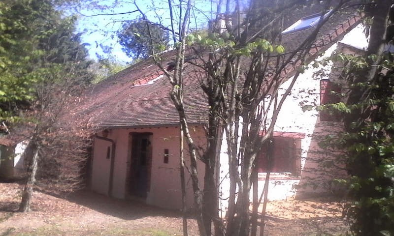 Vente maison / villa Henrichemont 97000€ - Photo 4