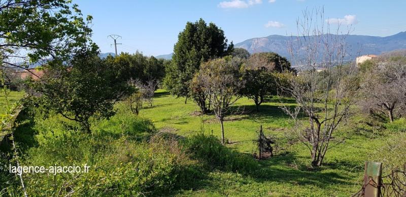 Vente terrain Bastelicaccia 160000€ - Photo 1
