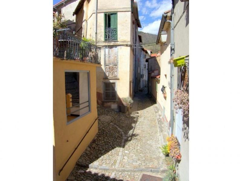 Vente maison / villa Prats de mollo la preste 80000€ - Photo 16