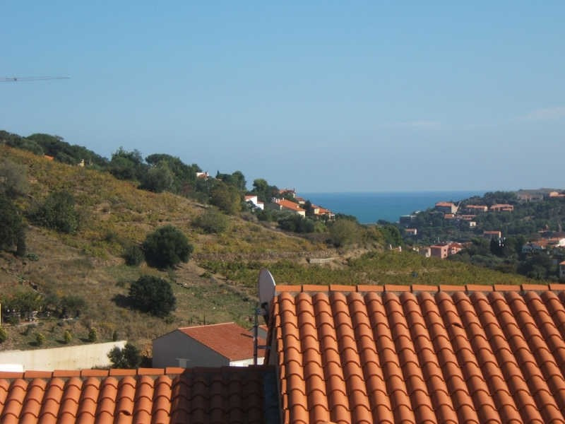 Produit d'investissement appartement Collioure 234 000€ - Photo 7