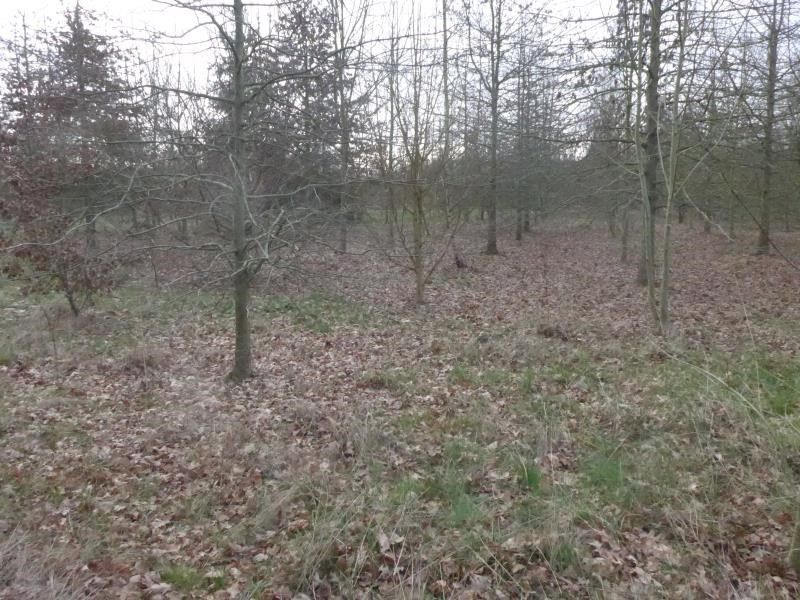 Vente terrain Fougere 55 000€ - Photo 2