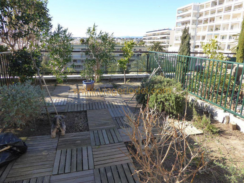 Viager appartement Cannes 118000€ - Photo 6