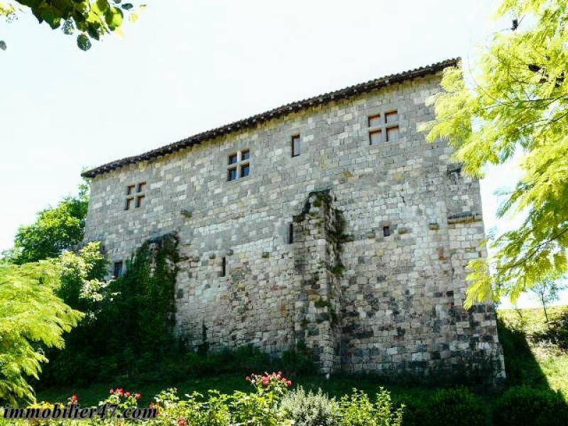 Vente de prestige maison / villa Prayssas 474000€ - Photo 13