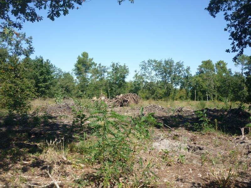 Vente terrain Saugnac et muret 111000€ - Photo 2