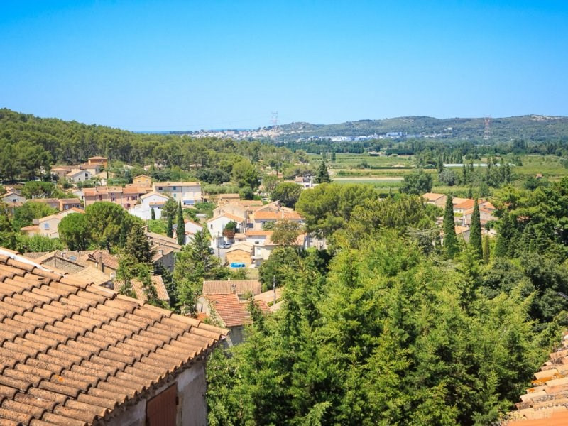 Location vacances maison / villa Barbentane 990€ - Photo 3