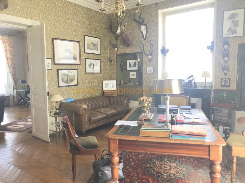 Viager maison / villa Saint-malo 550 000€ - Photo 7