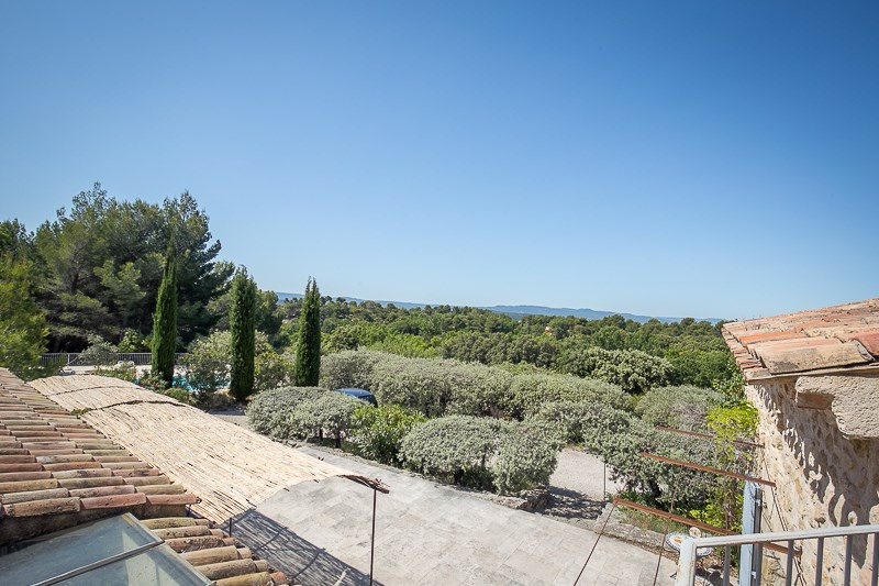 Vente de prestige maison / villa Vaugines 987 000€ - Photo 4