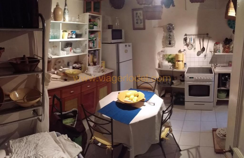Viager appartement Durfort-et-saint-martin-de-sossenac 42 000€ - Photo 2