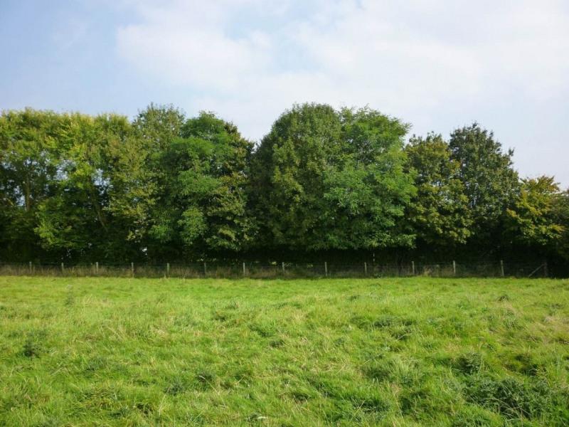 Vente terrain Montreuil-l'argille 11500€ - Photo 7