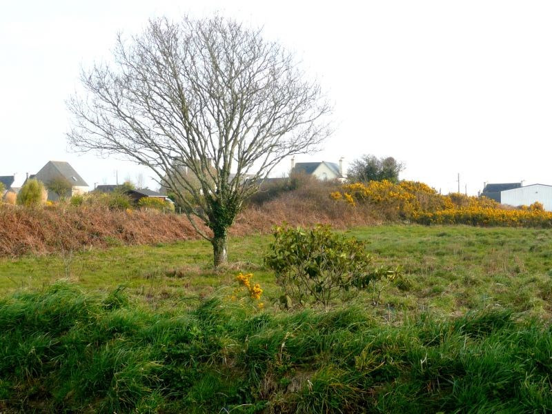 Vente terrain Plouhinec 35500€ - Photo 3