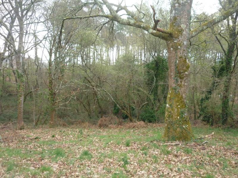 Vente terrain Belhade 49000€ - Photo 3