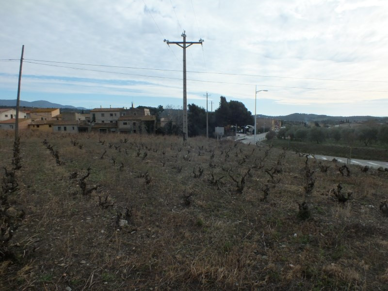 Sale site Roses-espolla 60 000€ - Picture 2