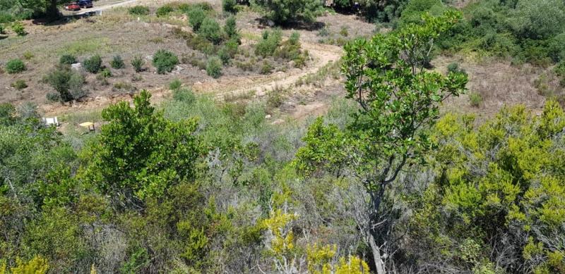 Vente terrain Pietrosella 155000€ - Photo 8