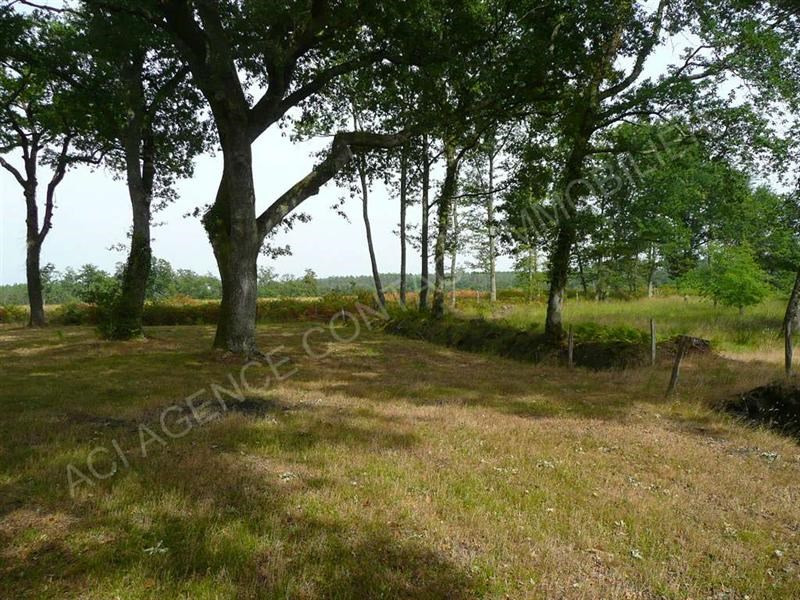 Vente terrain Vielle soubiran 55 000€ - Photo 1
