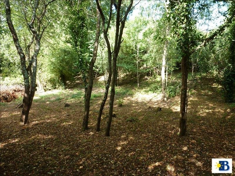 Vente terrain Vouneuil sur vienne 24000€ - Photo 4