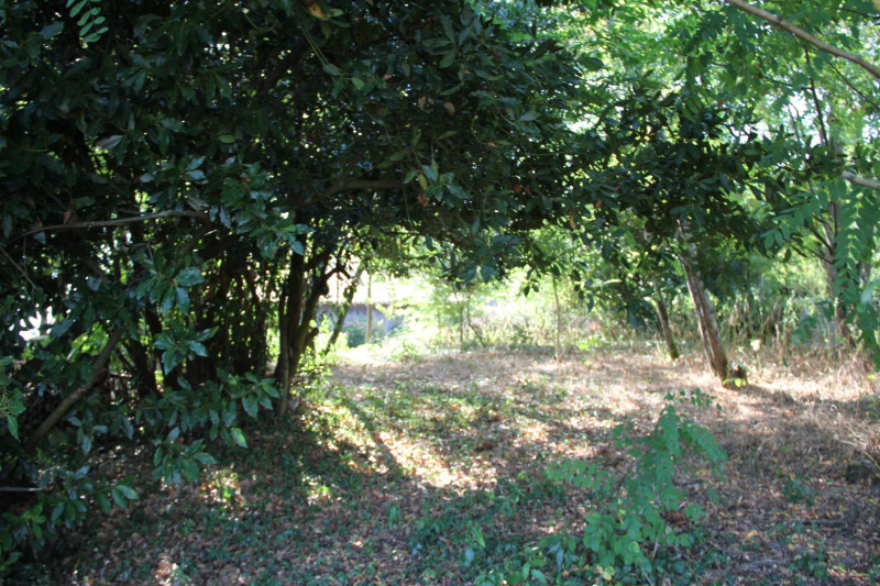 Vente terrain Lombez 10 km  ouest 40 000€ - Photo 2