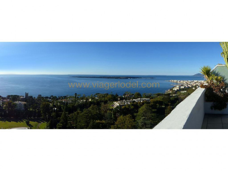 Life annuity apartment Cannes 1 291 000€ - Picture 2