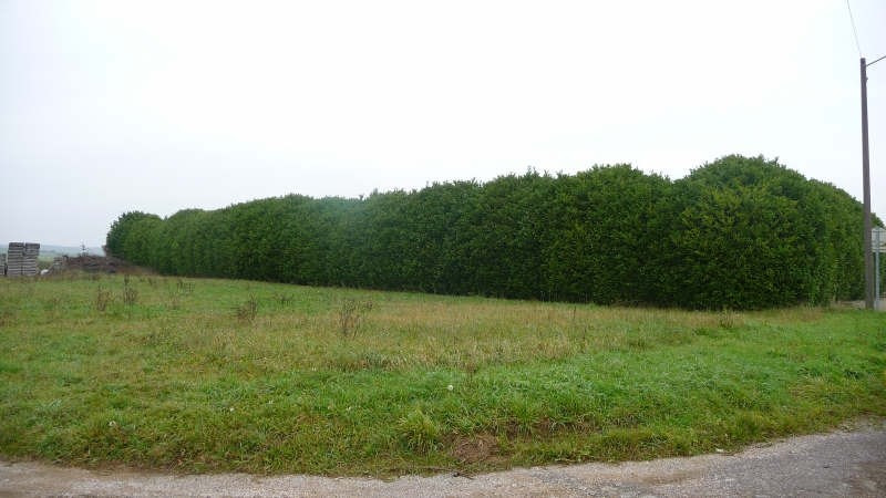 Vente terrain Esbarres 22 500€ - Photo 1