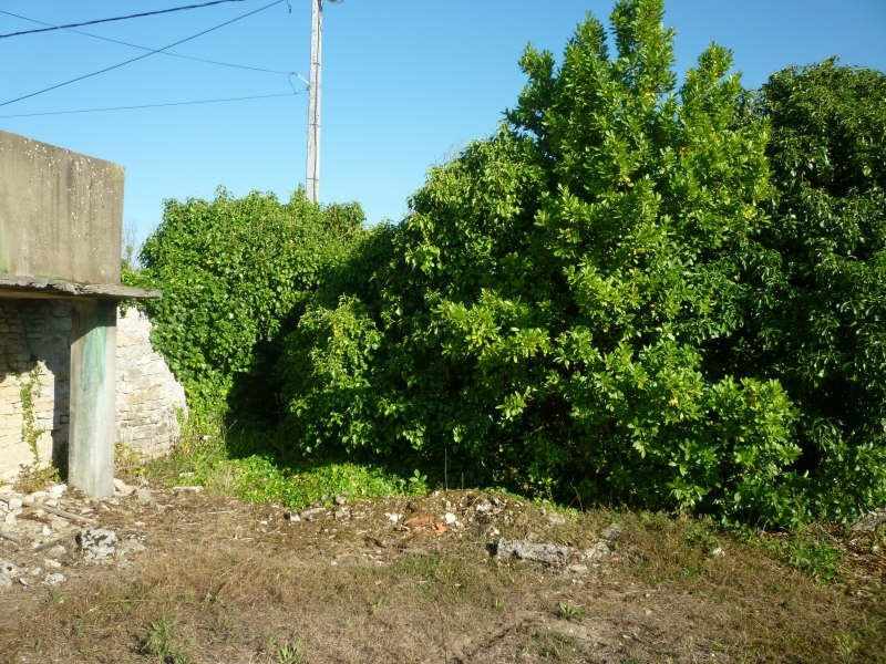 Vente terrain St pierre d oleron 158 000€ - Photo 6