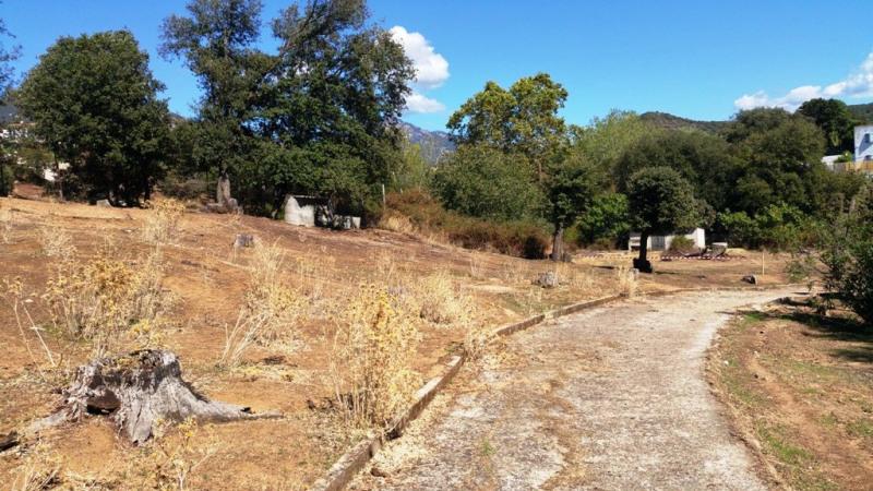 Vente terrain Eccica-suarella 130000€ - Photo 6