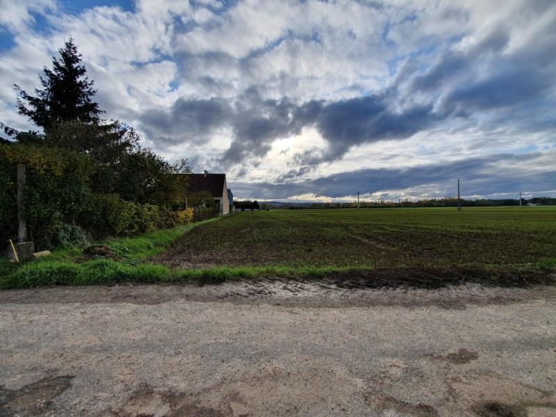 Sale site Courlon sur yonne 30000€ - Picture 2