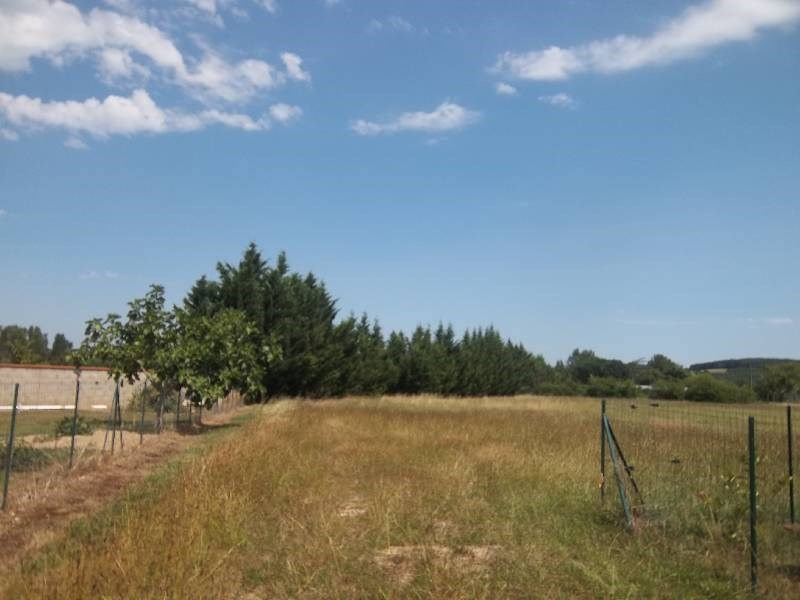 Sale site Giroussens 81000€ - Picture 1