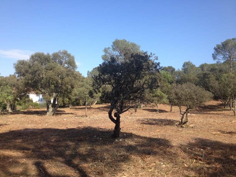 Vente terrain Le cannet des maures 127000€ - Photo 4