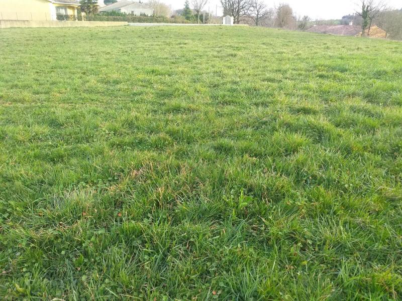 Vente terrain Realmont 41000€ - Photo 1