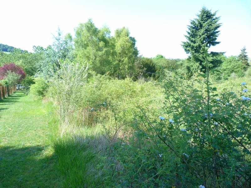 Vente terrain Charny oree de puisaye 25000€ - Photo 1