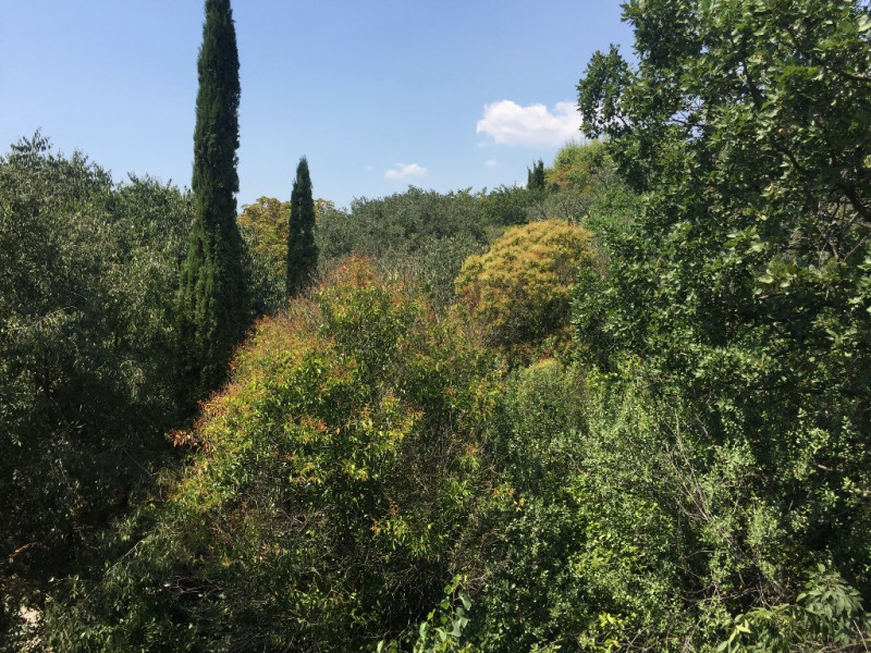 Vente de prestige appartement Aix en provence 593 000€ - Photo 4