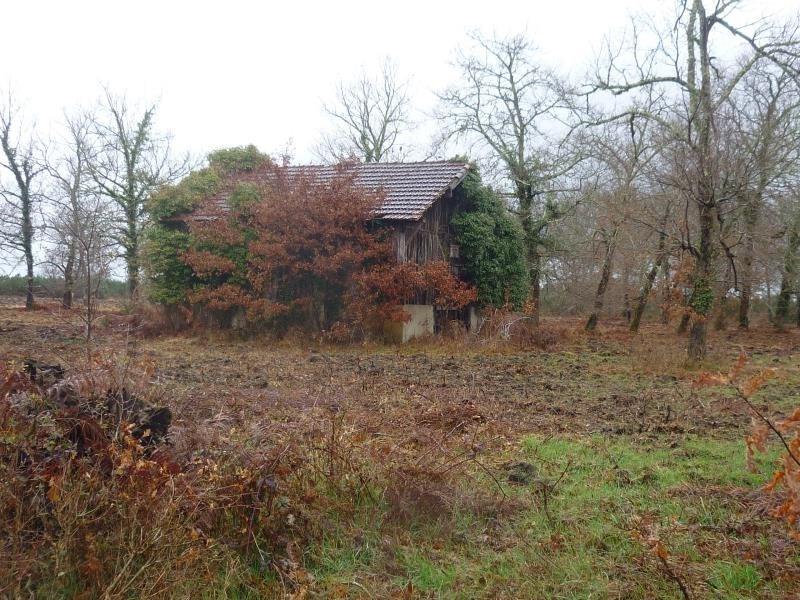 Sale house / villa Rion des landes 110000€ - Picture 4
