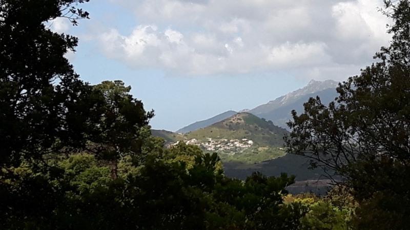 Vente terrain Bastelicaccia 508560€ - Photo 2