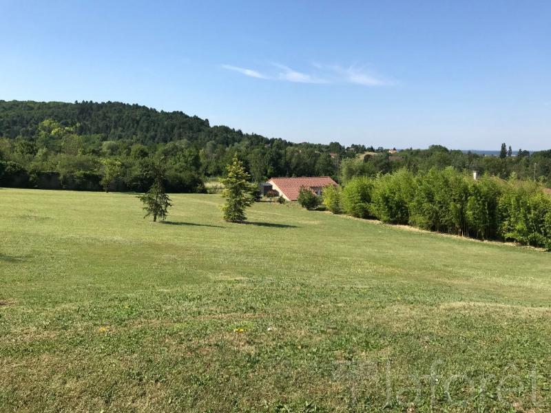 Vente terrain Ceyzeriat 487000€ - Photo 3