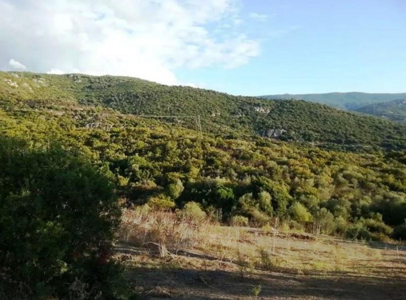 Vente terrain Pietrosella 155000€ - Photo 12