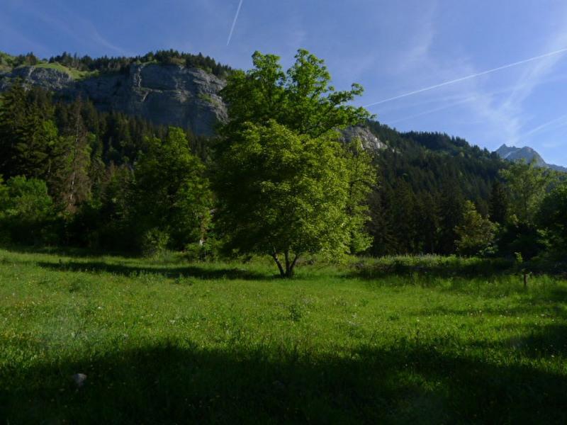 Verkauf grundstück Passy 159000€ - Fotografie 2