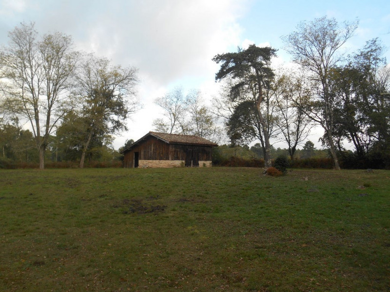 Deluxe sale house / villa Belin beliet 695000€ - Picture 15